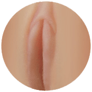 Light Pink labia
